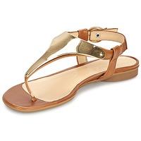 kengät Naiset Sandaalit ja avokkaat Gabor TARULE Brown