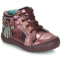 kengät Tytöt Bootsit Catimini RHUBARBE Tummansininen / vihreä / Dpf / 2852