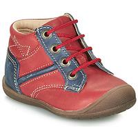 kengät Pojat Bootsit Catimini RATON Red / Laivastonsininen