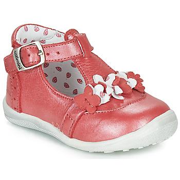 kengät Tytöt Bootsit Catimini SALICORNE Red / Dpf / Gluck