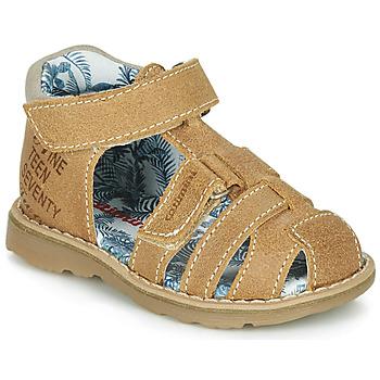 kengät Pojat Sandaalit ja avokkaat Catimini SYCOMORE Kivi / kahvi / Dpf