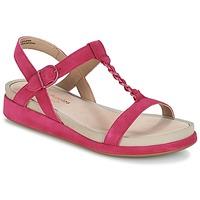 kengät Naiset Sandaalit ja avokkaat Hush puppies CHAIN T Raspberry