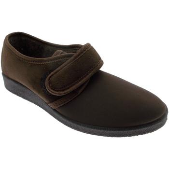 kengät Naiset Tossut Davema DAV392ma marrone