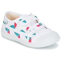 kengät Tytöt Matalavartiset tennarit Citrouille et Compagnie GLASSIA White