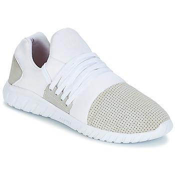 kengät Miehet Matalavartiset tennarit Asfvlt AREA LUX White / Grey