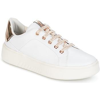 kengät Naiset Matalavartiset tennarit Geox D NHENBUS A White