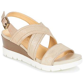 kengät Naiset Sandaalit ja avokkaat Geox MARYKARMEN P.B Gold / Beige