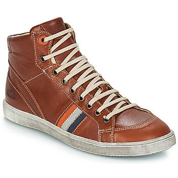 kengät Pojat Bootsit GBB ANGELO Brown / Dpf / 2367