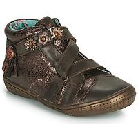 kengät Tytöt Bootsit Catimini ROQUETTE Dpf / 2852