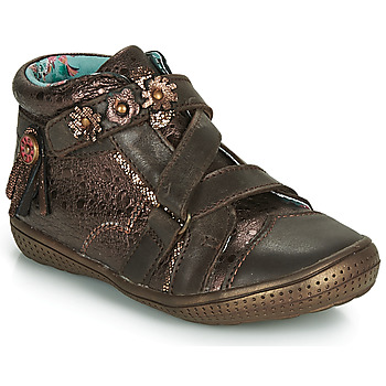 kengät Tytöt Bootsit Catimini ROQUETTE Brown / Kulta