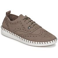 kengät Naiset Derby-kengät Les Petites Bombes DIVA Taupe