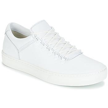 kengät Miehet Bootsit Timberland ADVENTURE2.0 CUPSOLE White
