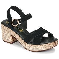 kengät Naiset Sandaalit ja avokkaat Musse & Cloud LARISE Black