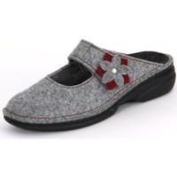 kengät Naiset Tossut Finn Comfort Arlberg Light Greycassis Wollfilz Harmaat