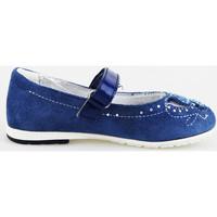kengät Tytöt Balleriinat Didiblu ballerine blu camoscio AG487 Blu