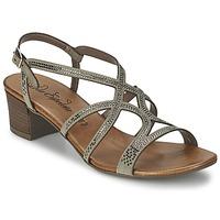 kengät Naiset Sandaalit ja avokkaat Lola Espeleta GUITARE Grey