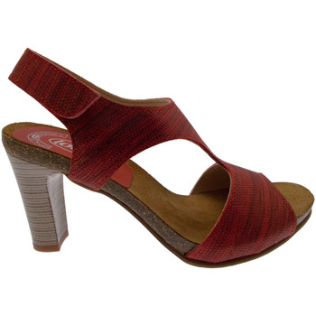 kengät Naiset Sandaalit ja avokkaat Calzaturificio Loren LOJ0833ne nero