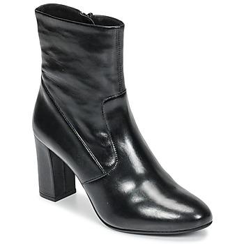 kengät Naiset Nilkkurit Steve Madden AVENUE Black