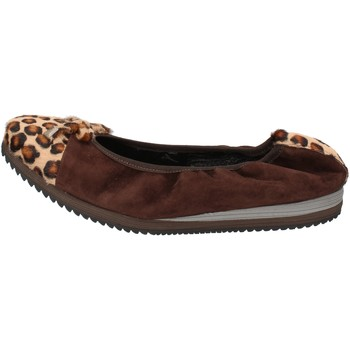kengät Naiset Balleriinat Calpierre Ballerina-kengät AD574 Ruskea