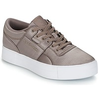 kengät Naiset Matalavartiset tennarit Reebok Classic WORKOUT LO FVS TXT Grey