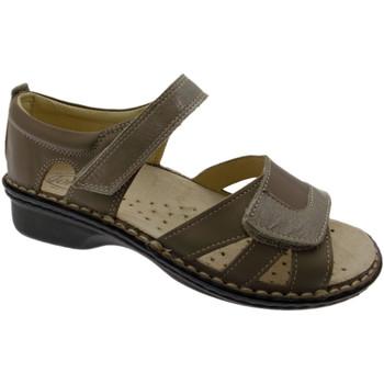 kengät Naiset Sandaalit ja avokkaat Calzaturificio Loren LOM2524to tortora