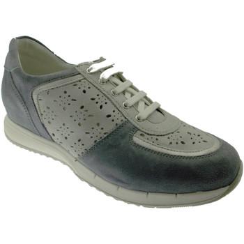kengät Naiset Matalavartiset tennarit Calzaturificio Loren LOC3795bl blu