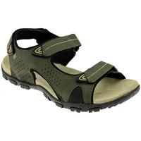 kengät Naiset Sandaalit ja avokkaat Lumberjack