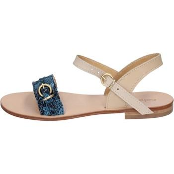 kengät Naiset Sandaalit ja avokkaat Calpierre Sandaalit BZ838 Sininen