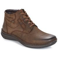 kengät Miehet Bootsit Josef Seibel Anvers 35 Brown