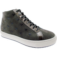 kengät Naiset Bootsit Calzaturificio Loren LOC3763gr grigio