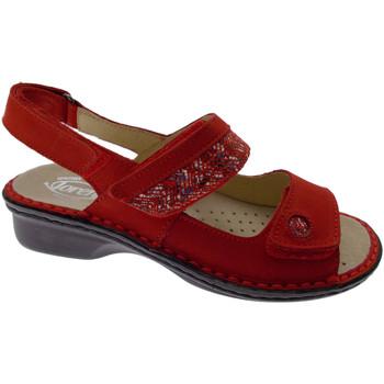kengät Naiset Sandaalit ja avokkaat Calzaturificio Loren LOM2716ro rosso