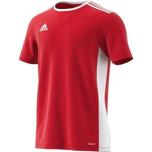 vaatteet Miehet Lyhythihainen t-paita adidas Originals Entrada 18 Valkoiset, Punainen