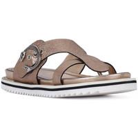 kengät Naiset Sandaalit ja avokkaat Elvio Zanon SANDALO CRACKEL Grigio