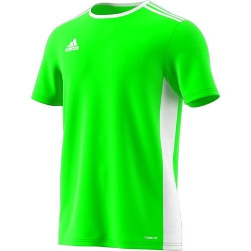 vaatteet Miehet Lyhythihainen t-paita adidas Originals Entrada 18 Vihreät