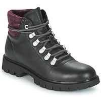 kengät Naiset Nilkkurit Caterpillar HANDSHAKE Musta / Purple