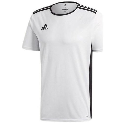vaatteet Lapset Lyhythihainen t-paita adidas Originals Entrada 18 Junior Valkoiset