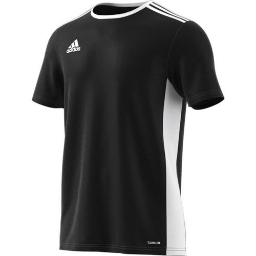 vaatteet Miehet Lyhythihainen t-paita adidas Originals Entrada 18 Valkoiset, Mustat