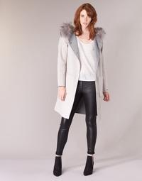 vaatteet Naiset Paksu takki Oakwood YALE BI Beige / Grey