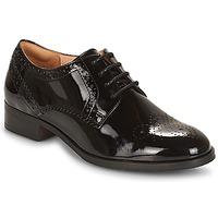 kengät Naiset Derby-kengät Clarks Netley Rose Musta / Tummanvihreä