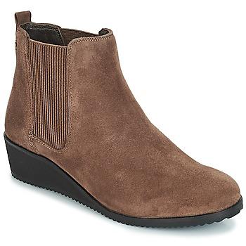 kengät Naiset Bootsit Hush puppies COLETTE Brown
