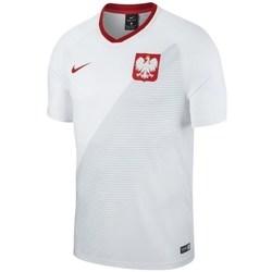 vaatteet Miehet Lyhythihainen t-paita Nike WC 2018 Home Breathe Top Valkoiset, Harmaat