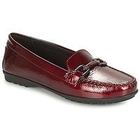 kengät Naiset Mokkasiinit Geox D ELIDIA Bordeaux