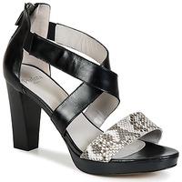 kengät Naiset Sandaalit ja avokkaat Perlato IREGUA Black / Python