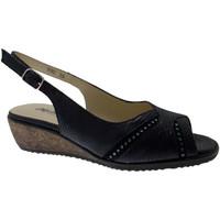 kengät Naiset Sandaalit ja avokkaat Melluso MET425bl blu