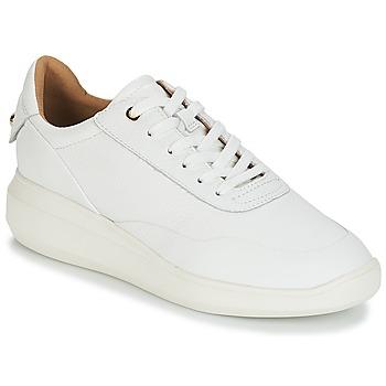 kengät Naiset Matalavartiset tennarit Geox D RUBIDIA White