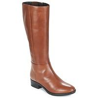 kengät Naiset Saappaat Geox D FELICITY Brown