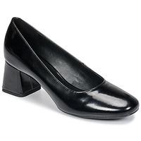 kengät Naiset Korkokengät Geox D SEYLISE MID Black