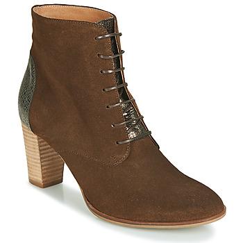 kengät Naiset Bootsit André CLAUDIA Taupe
