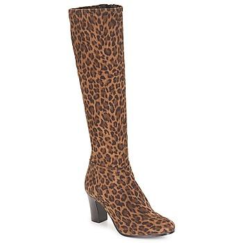 kengät Naiset Saappaat André GANTELET 4 Leopardi