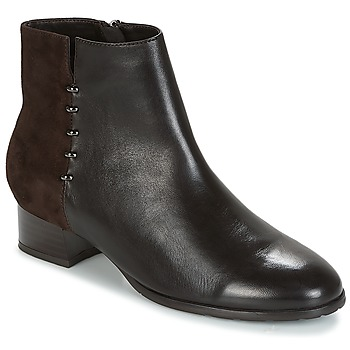 kengät Naiset Bootsit André CARLA Brown
